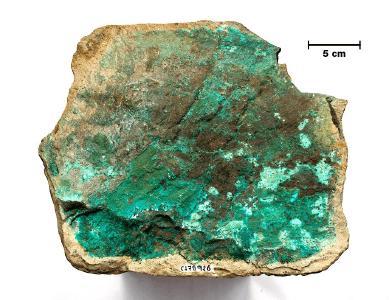 Abbildung 3. Kupfermineralisierung (grün ist Malachit - ein Kupfercarbonatmineral) im Tuff vom Kirus-Ziel