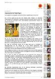 Automation im Papierlager  RFID-Installation von stonegarden unterstützt innovatives Logistikkonzept bei Stora Enso