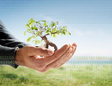 Ein neues Bäumchen für jeden Neukunden: ReadSoft engagiert sich für die Umwelt