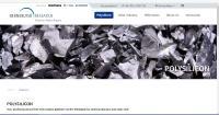 Bernreuter Research:  Polysilicon Information Platform