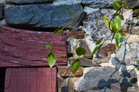 Laibung und Sturz der Doppelflügeltür zum Gartentür wurden handwerklich geschickt in den Wandbildner eingebunden. Foto: Achim Zielke