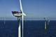 Trianel Windpark Borkum in operation for six months