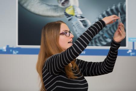"""Technische Innovationen suchen sich oft ihr Vorbild in der Natur: Der bionische """"FinGripper"""" wurde beispielsweise einer Fischflosse nachempfunden. Eingesetzt als Robotergreifer kann er selbst zerbrechliche Gegenstände bewegen / (c) Baden-Württemberg Stiftung gGmbH"""