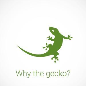 Was haben der Gecko und myGEKKO gemeinsam?