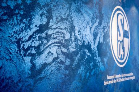 Auf der lebendigen, metallisch glänzenden Wandoberfläche wurde das Vereinswappen des FC Schalke 04 eingearbeitet (Foto: Caparol Farben Lacke Bautenschutz/Andreas Wiese)