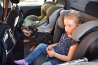 Hitze Kinder und Tiere im Auto