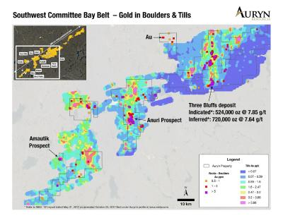 Auryn Advances High-Grade Gold Targeting at Committee Bay