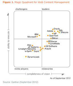 """""""Magic Quadrant for Web Content Management 2012"""" von Gartner"""