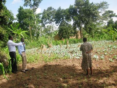 Specialised agricultural training courses teach the people of Kakiri how to cultivate crops for themselves to ensure future supplies of basic foods