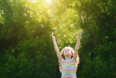 iKratos - Partner für Solarreparatur und -reinigung