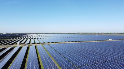 GOLDBECK SOLAR starts the construction of 45 MWp in Buinerveen - in total 146 MWp will be connected to the Tennet grid