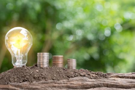 Umweltbewusst und kostengünstig