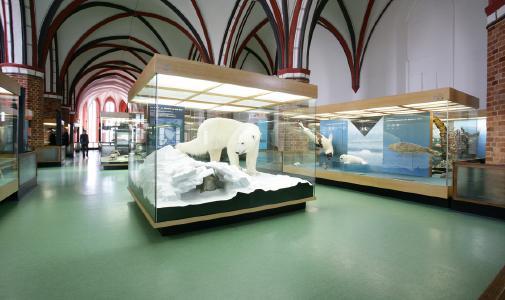 Der Museumsrundgang wird im Zuge der Modernisierung erweitert. Foto: Johannes-Maria Schlorke