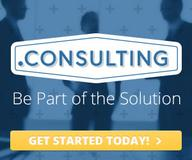Consulting-Domains: A new Vision of Consulting