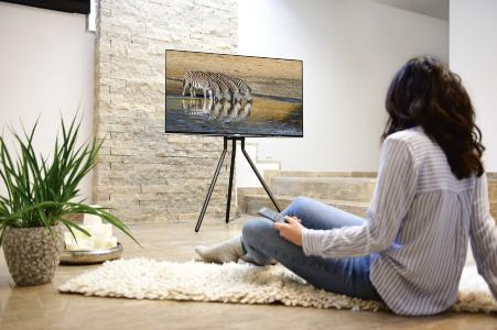 TV-Bodenständer im Staffelei-Design