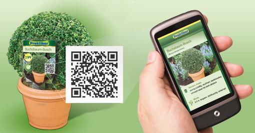 Grafik QR-Codes für Praktiker Pflanzenwelt
