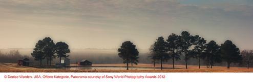 Copyright Denise Worden, USA, Open, Panorama courtesy of Sony World Photography Awards 2012