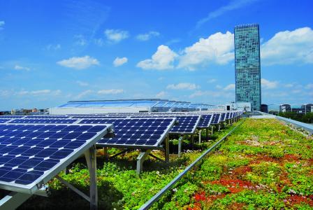 Die Dachbegrünung sorgt für eine kühlere Umgebungstemperatur und dadurch für mehr Ertrag der Photovoltaikanlage.