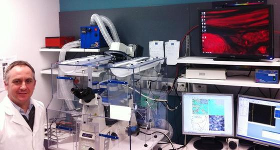 Dr. Michael Higgins am Intelligent Polymer Research Institute und ARC Centre of Excellence for Electromaterials Sciences, Universität von Wollongong (Australien) mit seinem JPK NanoWizard® AFM System