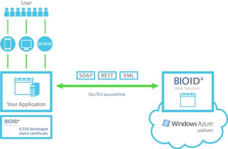 Developers of web, cloud and mobile applications can securely access BioID Web Services using SOAP and RESTful APIs.