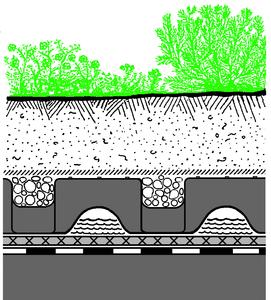 """Systemaufbau """"Dachgarten"""" mit Floradrain® FD 60"""