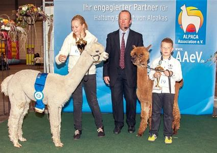 8. Internationale Alpakashow in Erfurt am 24./25.Okt.2015