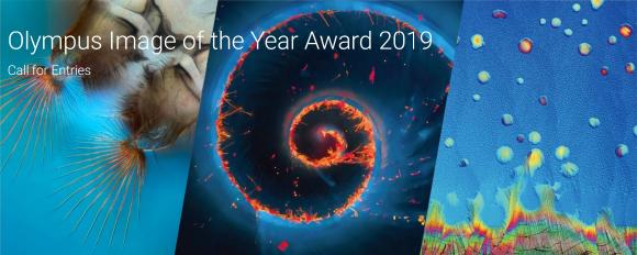 "The Art of Science: Olympus startet ersten weltweiten ""Image of the Year""-Award"