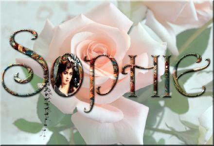"""Unter den MT-Domains ist der Name """"Sophie"""" noch frei"""