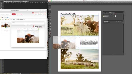Managing Adobe Indesign projects