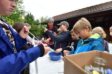 Kinder- und Jugendwoche bei B. Braun  / Bildnachweis: B. Braun Melsungen AG