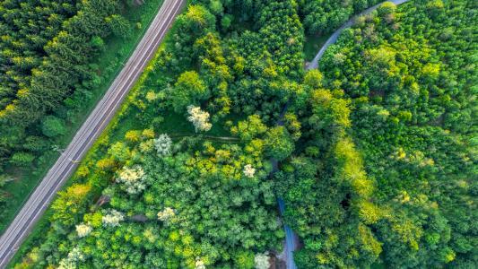 Klimastrategie 2030: Knorr-Bremse treibt umfangreiche Klimaschutzmaßnahmen voran
