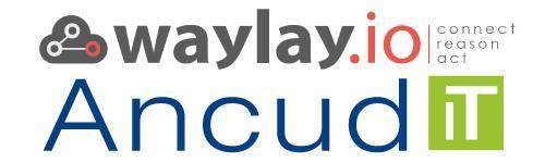 Waylay und Ancud IT