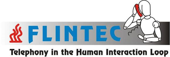 Flintec Logo 2009