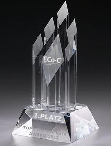 ECo-C Top-Five TrainerIn Award 2012