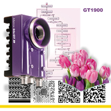 Matrox Smart-Camera - high-resolution for machine-vision and industrial imaging