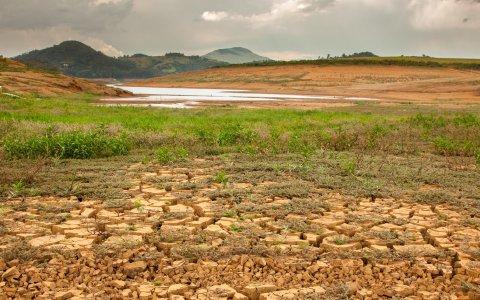 Dürre trifft Argentinien und Brasilien