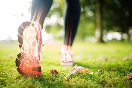 Hydraulische Knöchel-Technologie Teil 4 - Erkunden Sie die Knöchel-Hydrauliken von Endolite