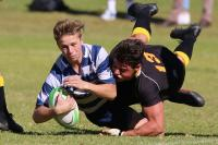 Rugby-Domains