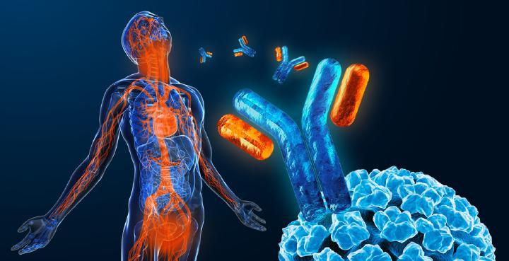 hpv induzierte tumore