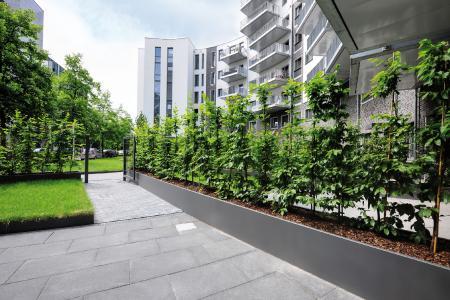 Maßgefertigte Hochbeete der Firma Richard Brink säumen die Gärten, die zu den Wohnungen im Parterre gehören.