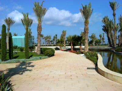 Palm trees and plants are growing in the gardens of the Le Méridien Oran Hotel & Convention Centre. The only reminder that there is an underground garage beneath is the turquoise stairways in the middle of the gardens, Photo: ZinCo
