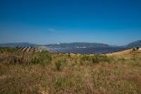 Kossos: Im Nordosten Griechenlands hat ABO Wind 2019 den mit sieben Megawatt bislang leistungsstärksten Solarpark des Unternehmens errichtet. Ein weiterer, noch deutlich größerer griechischer Solarpark ist gerade im Bau. Das Projekt Megala Kalyvia (38 Megawatt) geht in den kommenden Wochen ans Netz