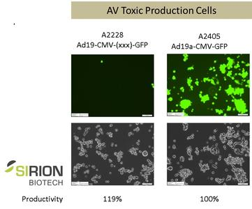 AV Toxic Production Cells