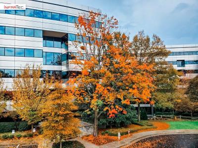 InfraTec Infrared LLC, Büro Atlanta, Georgia