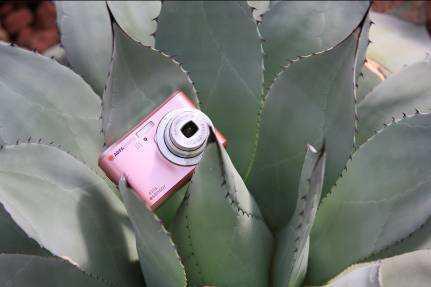 """""""Das Design der AgfaPhoto Digitalkameras ist """"Made in Germany."""""""