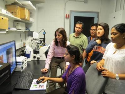 Dr. Rosa Espinosa-Marzal und Mitglieder ihrer Forschungsgruppe an der Universität Illinois in Urbana-Champaign diskutieren die mit ihrem JPK NanoWizard® Rasterkraftmikroskop erzielten Ergebnisse