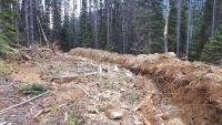 Aufnahme eines neu errichteten Grabens bei Lucky Todd