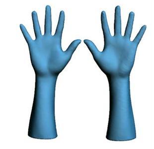"""""""Mittlere Hände"""" der Größe 8,5. ©Hohenstein Institute"""