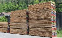 Neues Forschungsprojekt: Brettsperrholz aus modifiziertem Buchenholz