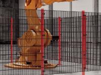 HIGH LINE PLUS in der Produktions- und Montageautomatisierung
